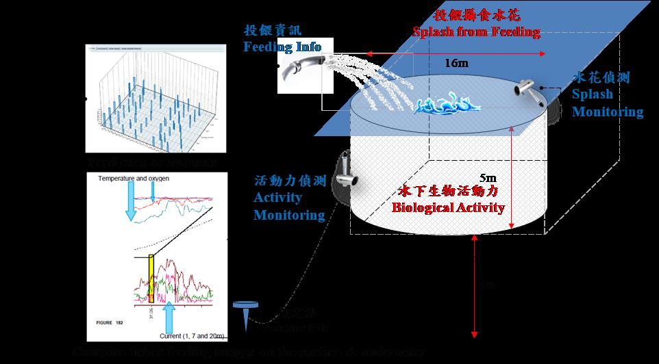 圖1、箱網養殖生物活動力監測系統畫面圖。