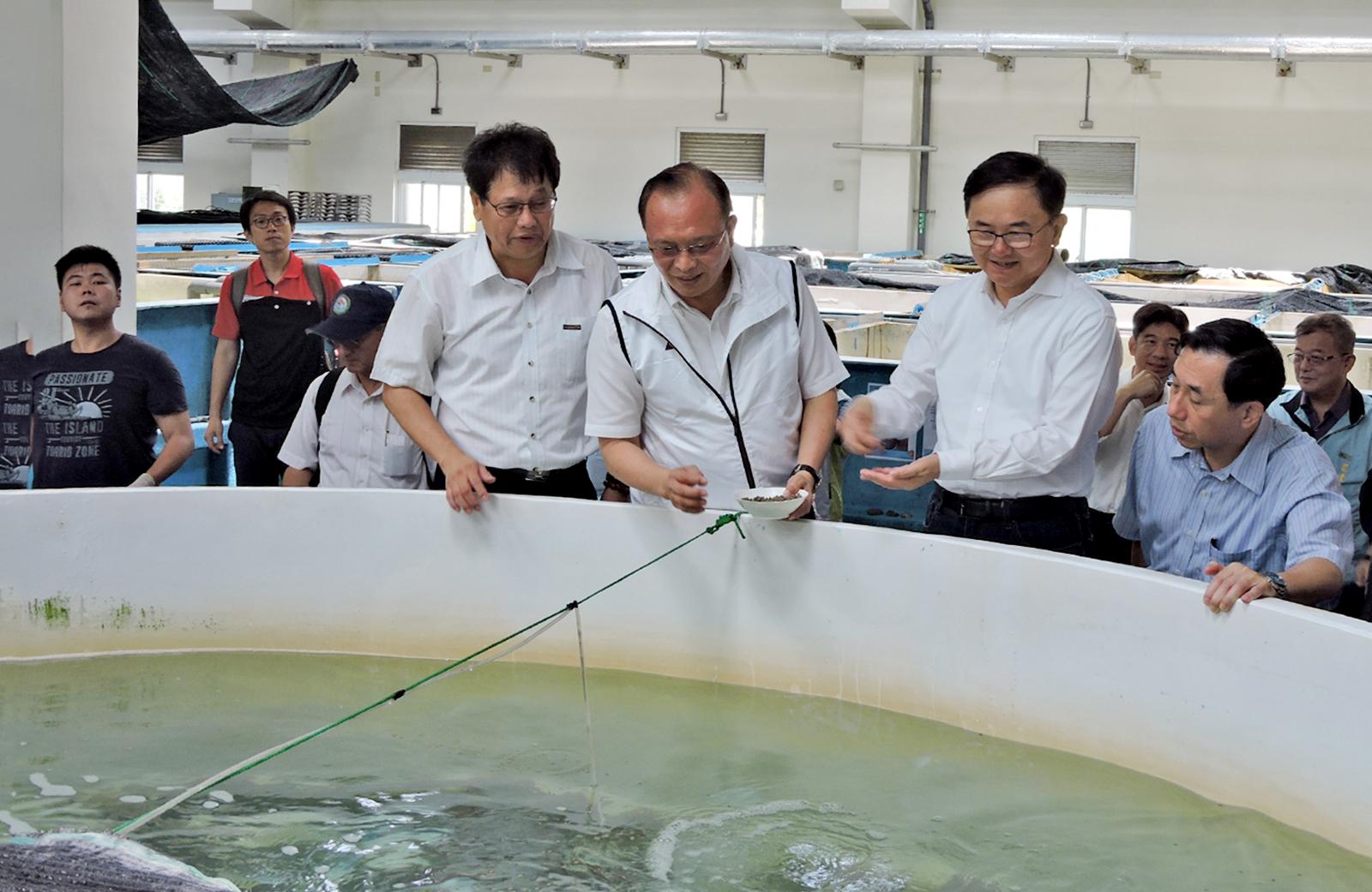 發展冷水魚類人工養殖技術,林聰賢盼比目魚「牙鮃」結合海洋深層水創造新價值